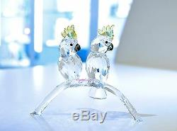 Swarovski Crystal Cockatoos Couple Love Bird Wedding 5135939 Brand New In Box