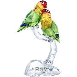 Swarovski Crystal Lovebirds #5379552 Brand Nib Birds Large Colorful Save$$ F/sh